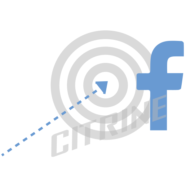 citrine_facebook_marketing