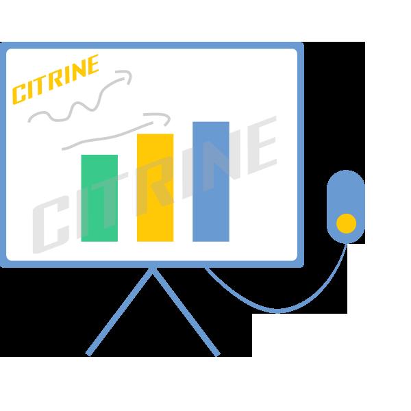 citrine_seminars