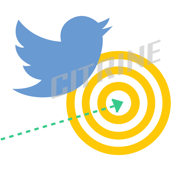 citrine_twitter_marketing