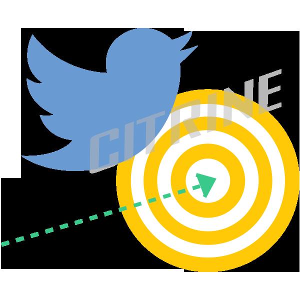 citrine_twitter_marketing
