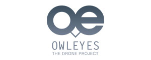 Citrine συνεργάτες λογότυπο Owleyes